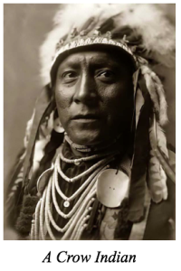 CrowIndian
