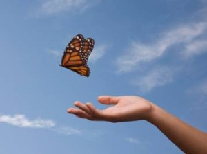 gi-letting-go-butterfly